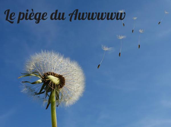PiegeAw